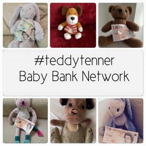 teddytenner